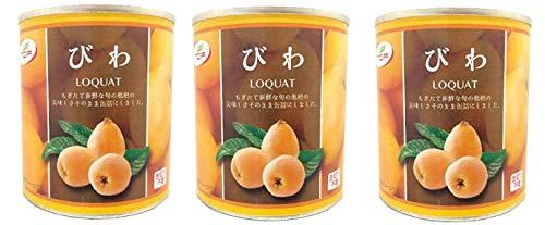 びわ缶詰 300g×3個 ビワ シロップ漬け 枇杷 まとめ買い 業務用 缶詰め かんづめ フルーツ