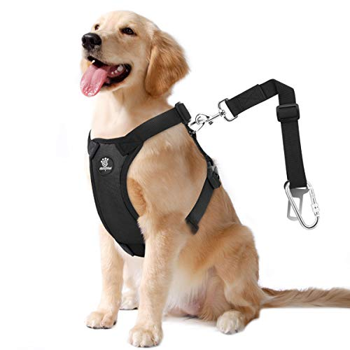 VavoPaw Dog Vehicle Safety Vest Harness, Adjustable Soft Padded Mesh Car Seat Belt Leash Harness with Travel Strap and Carabiner for Most Cars, Size Extra Large, Black