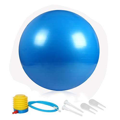 ZHIYE Blue Pilates Ball 65 CM Yoga Exercise Ball Core Fitness Bender, Yoga,...