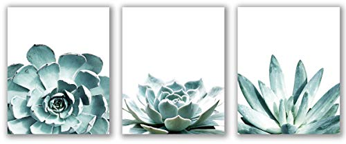 Set of 3 Watercolor Succulents, Cactus Prints - 8' x 10' - Unframed, Succulent Prints, Succulent Art Prints, Bedroom Wall Décor, Modern Minimalist Poster, Printable Wall Decor