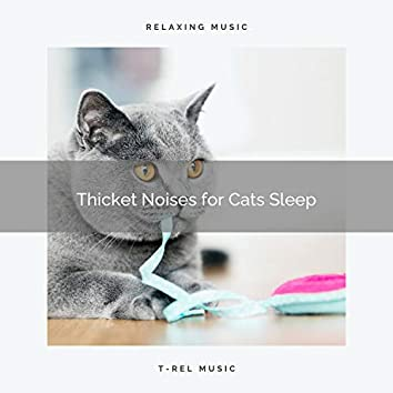 Thicket Noises for Cats Sleep