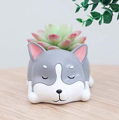 Husky Dog Succulent Planter Pots for Office House Balcony Landscape Creative Decorative Flower Pots (Husky)