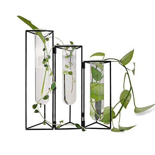 SHINA Reagenzglas-Vase mit Eisenrahmen Ständer für den Schreibtisch, Glas-Pflanzgefäß Hydrokultur-Vase Wandbehang montierte Vase mit Gestell/Halterung für Hydrokultur-Pflanzen Heim und Büro-Dekoration
