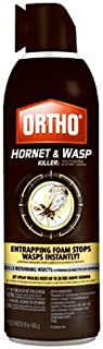 Ortho 0192610 071549019266 Hornet and Wasp Killer, 16 oz, Brown/A