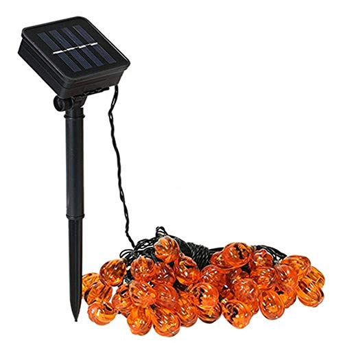 APcjerp Solar String Lights Waterproof Outdoor Fairy Lighting for Christmas Home Garden Yard Patio Porch Tree Party Holiday Decora. Hslywan