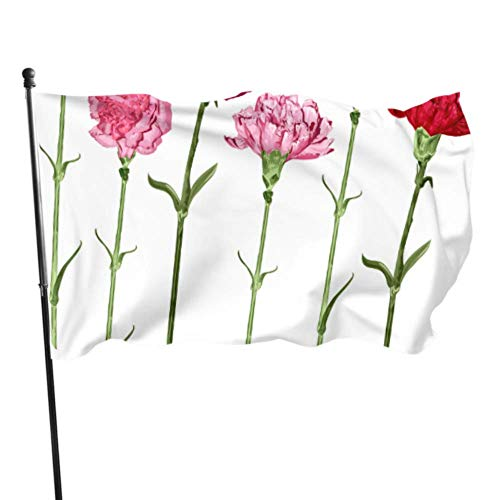 AQQA Flores de Clavel de Amor Maternal Banderas de Patio para Acampar Soporte de Bandera para Patio al Aire Libre 3x5 pies Colores Vibrantes Calidad Poliéster y Ojales de latón