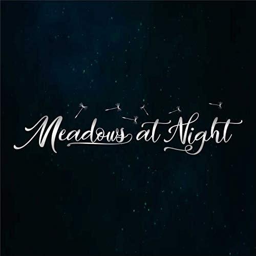 Meadows at Night
