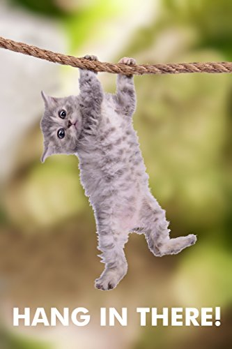Hang in There Cat Retro Motivational Cool Wall Decor Art Print Poster for Office 12x18