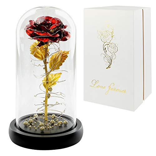 Gift for Her Christmas, Red Rose Gift, LED Rose Flower in Glass Dome,Artificial Flowers Last Forever,Preserved Rose,Forever Rose Gift Mother, Valentine's Day,Wedding, Anniversary,Girlfriend