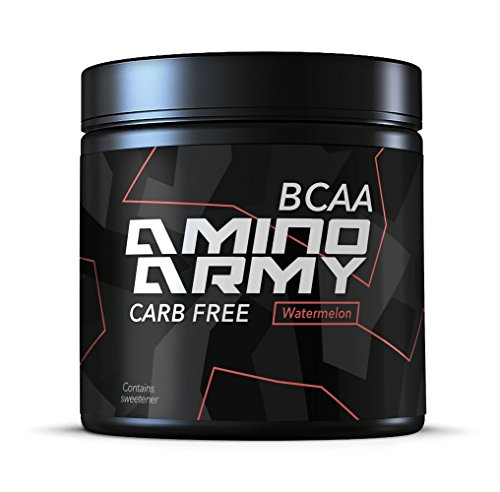 BCAA Powder 25 Servings (Watermelon) 6 000 mg BCAA + 1000 mg Glutamine + 3000 mg Alanin, Lysine, Glycine Total 10,000 mg Amino acids per Serving Great for Pre Workout & Recovery Purposes