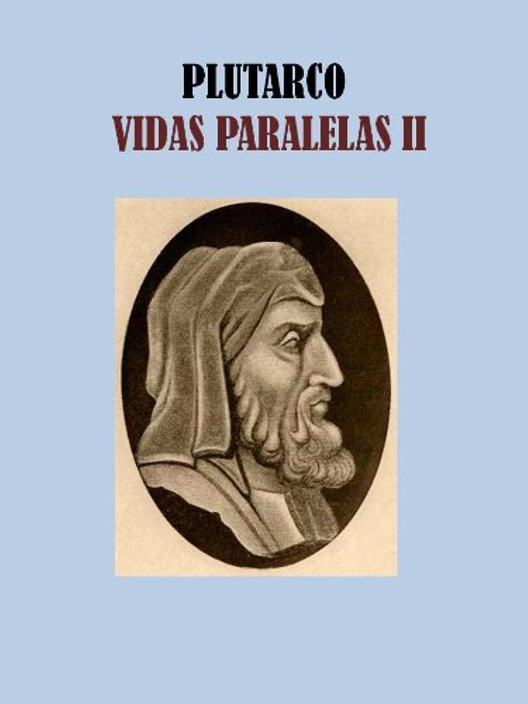 雨のフルート南方のVIDAS PARALELAS II (Spanish Edition)