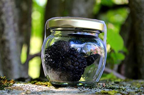 frische Sommertrüffel im Ganzen 35/60g - italienische frische Trüffel im Glas in Salzlake