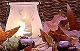 Pritogo Teelichter Kunststoffhülle, Weiss [50 Stück] Ø 3,8 * 2,5 cm, Rußfrei, Brenndauer: 9 Stunden - 4