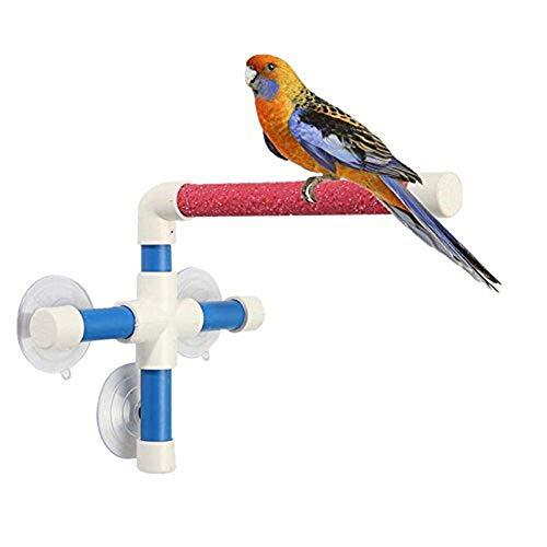 Uteruik - Soporte de Pared con Ventosa para Ventana de Ducha, para pájaros, Loros, periquitos, cacatúas, Conos africanos, Grises, Accesorios de baño de Amazon Cockatoo, 1 Unidad