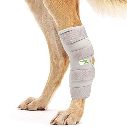 RockPet Attelle pour Articulation Patte Arrière pour Chien, Bandage Thérapeutique de Hanche pour Canins (XL, Gris)