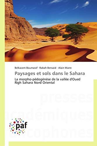 Paysages et sols dans le Sahara: La morpho-pédogénèse de la vallée d'Oued Righ Sahara Nord Oriental (Omn.Pres.Franc.)