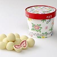 六花亭 ストロベリーチョコ ホワイト 100g お土産袋入り (1個)