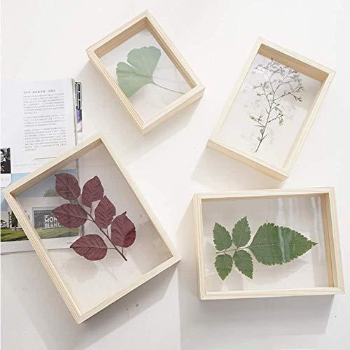 Kreativer doppelseitiger hölzerner Herbarium-Fotorahmen aus Holz Holzfarbe dreidimensionaler Bilderrahmen transparenter Fotorahmen aus Holz, benutzerdefiniert 15,7 * 20,8 cm