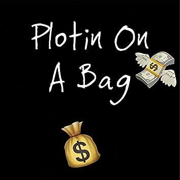 Plotin On A Bag