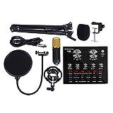 PC Mikrofon USB Kit Mit Mikrofonarm, Stoßdämpferhalterung, Studioqualität, Für Gaming, Studio...