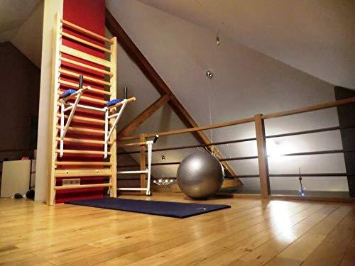 ARTIMEX espaldera y Barra para Triceps para Gimnasia y Fitness - Utilizado en hogares, gimnasios y centros de Fitness, código 270-1