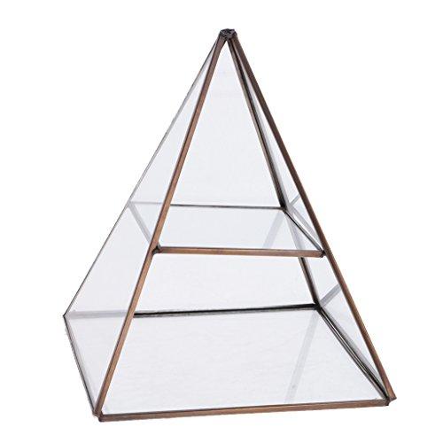 joyMerit Klare Geometrische Glas Pflanze Terrarium Mini Pflanzer Schmuckschatulle Gewächshaus Pflanzgefäß Kerzenhalter