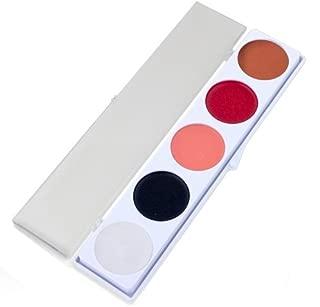 ProFace Auguste Makeup Palettes (5 Colors) by ProKnows