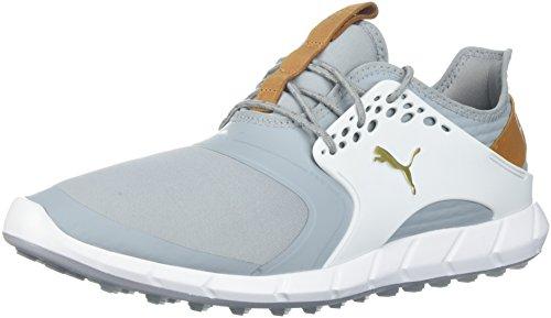 Puma Golf Men's Ignite Pwrsport Golf Shoe, Quarry/Team Gold/White, 7 Medium US