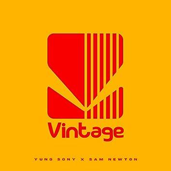 Vintage (feat. Sam Newton)