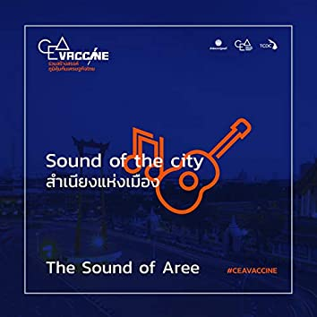 The Sound of Aree (Sound of the City สำเนียงแห่งเมือง)