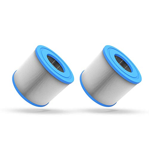 WAVE Hot Tub Filter Cartridges | Replacement Spa Filters for Hot Tubs Purchased in 2020 & Later (Pack of 2)