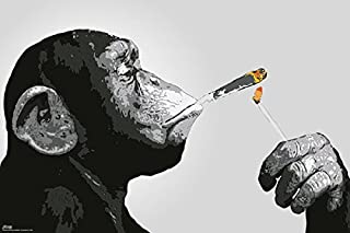 Steez - Poster/Print (Monkey Smoking A Joint) (Size: 36 inches x 24 inches)