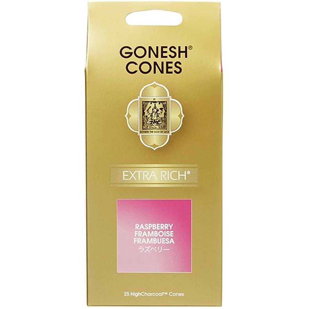 危険許容望むガーネッシュ(GONESH) エクストラリッチ インセンス コーン ラズベリー 25ヶ入