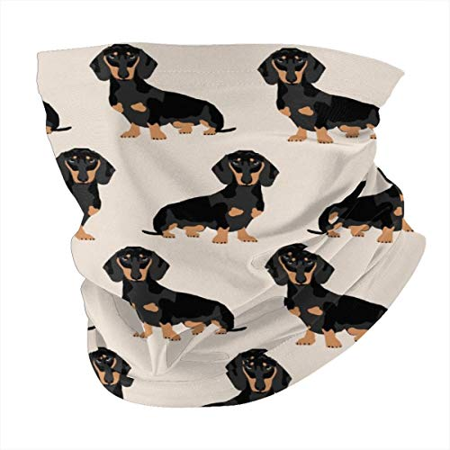 Doxie Dachshund Weiner Dog Pet Dogs Face Scarf Cover Mask - Neck Gaiter Sun Dust Bandanas Headwear for Fishing Motorcycling Running