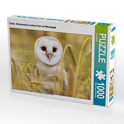 CALVENDO Puzzle Eulen: Schleiereule in einem Feld auf Mäusejagd. 1000 Teile Lege-Größe 64 x 48 cm Foto-Puzzle Bild Verlag