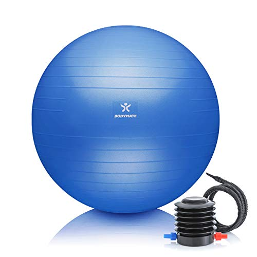 BODYMATE Ballon Fitness + Pompe Incluse + E-Book Gratuit Bleu 65cm