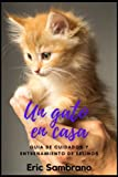 Un gato en casa: Guía de cuidados y entrenamiento de felinos