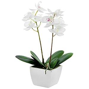 Orquídeas artificiales en maceta, de Country Baskets