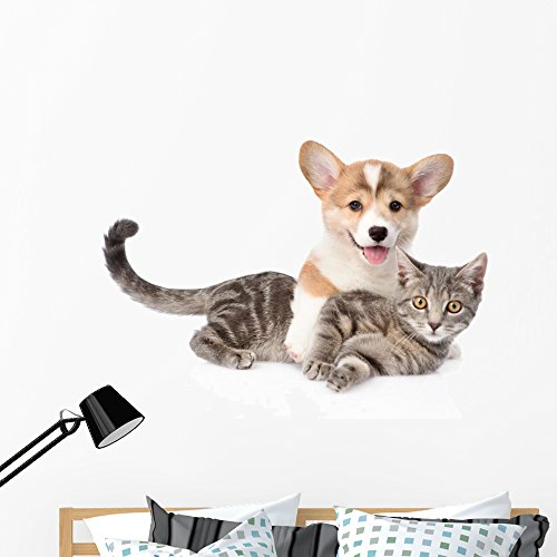 Wallmonkeys FOT-72671502-48 WM362146 Pembroke Welsh Corgi Puppy Hugging Cat Isolated on White Backgr Peel and Stick Wall Decals (48 in W x 34 in H), Extra Large