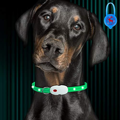 Oladwolf Leuchthalsband Hund Aufladbar, LED Hundehalsband Leuchtend wasserdicht Längenverstellbar USB, Haustier Sicherheit Kragen für Hunde und Katzen - 3 Leuchtmodi Grün