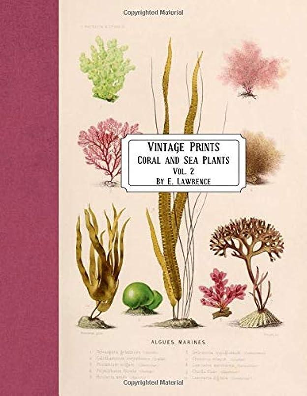 蒸留する引き付ける慣性Vintage Prints: Coral and Sea Plants: Vol. 2