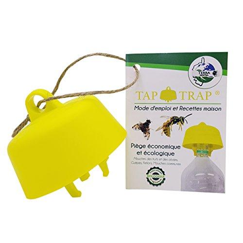 Terra Nortra - Trampa para avispas con trampa para moscas de frutas, trampa para moscas de los olivos ecológica, incluye recetas de cebo Tap Trap