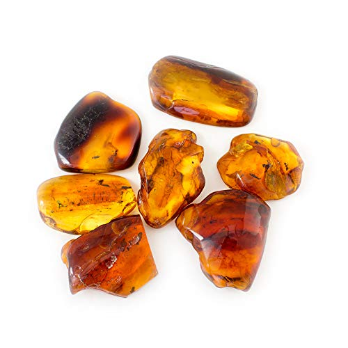 Nickolas Jewellery Genuine Baltic Amber Specimen with Fossil Insect, Multiple Insects in Amber, Collector's Specimen