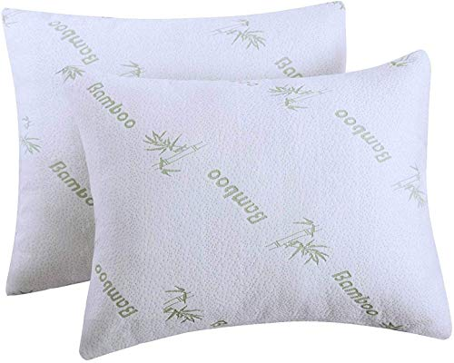 Niagara Sleep Solution Super Soft Bamboo Cooling Pillow Protectors Queen 2 Pack/Pair Zippered Case, Guaranteed Noiseless Pad, Ultra Plush Absorbent Encasement