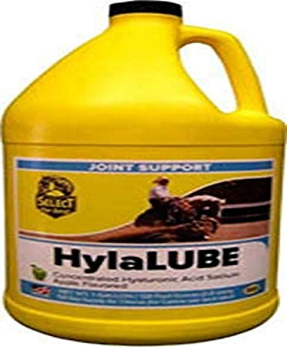 RICHDEL 81284 Hylalube Concentrate Apple