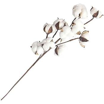 JIUY Flor de simulación 10 Ramas de algodón Natural Marcas Inicio decoración de la Boda Ramos de la Flor de Pared Planta Falsa Flores (Blanco): Amazon.es: Hogar