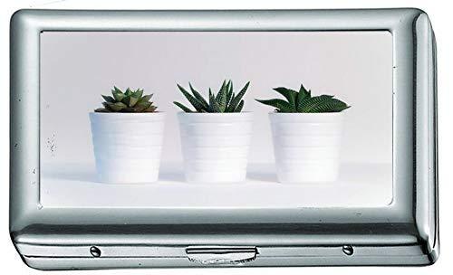 Plantas Surtidas Verdes en macetas de cerámica Blanca 776 Estuche/Caja de Cigarrillos...
