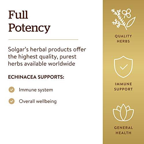 Solgar Echinacea, 100 Vegetable Capsules - Immune Support - Full Potency (FP) - Non-GMO, Gluten Free, Dairy Free, Kosher - 100 Servings