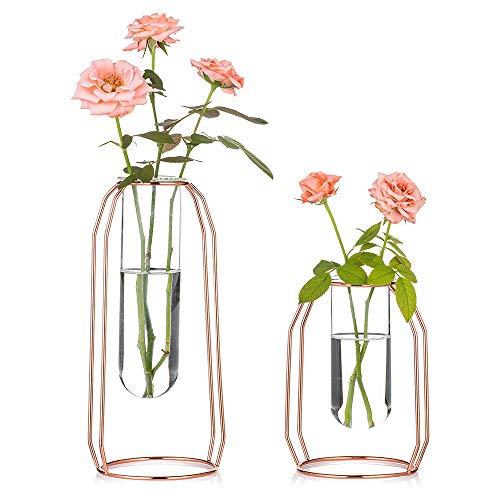 Jarrones Decorativos Modernos Altos Transparentes jarrones decorativos modernos altos  Marca Nuptio