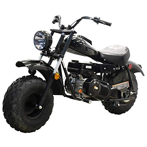 coleman gas mini bike